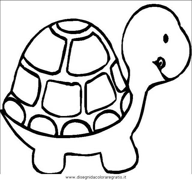 animali/tartarughe/tartaruga_tartarughe_15.JPG