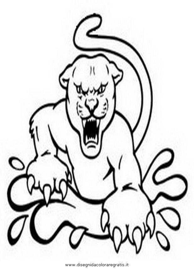 animali/tigri/coguaro.JPG