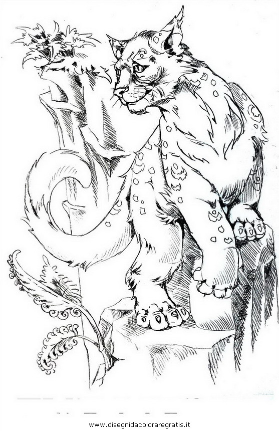 animali/tigri/puma_01.JPG