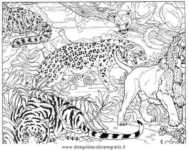 Disegno tigre 05 animali da colorare for Disegni da colorare animali della foresta