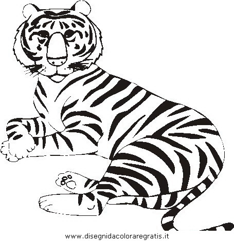 animali/tigri/tigre_14.JPG