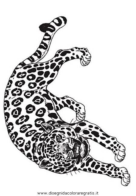 animali/tigri/tigre_15.JPG