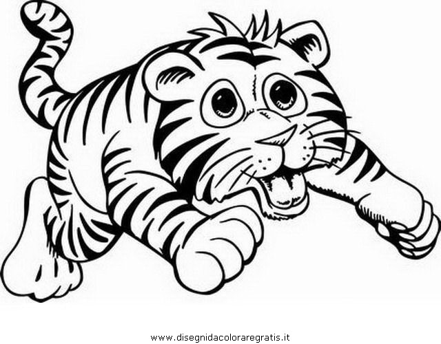 Disegno tigrotto animali da colorare