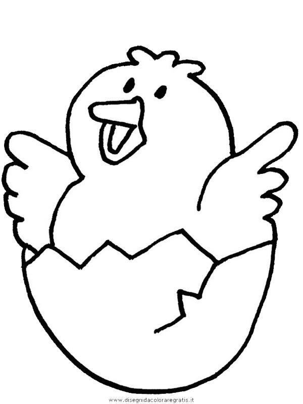 animali/uccelli/chick.JPG