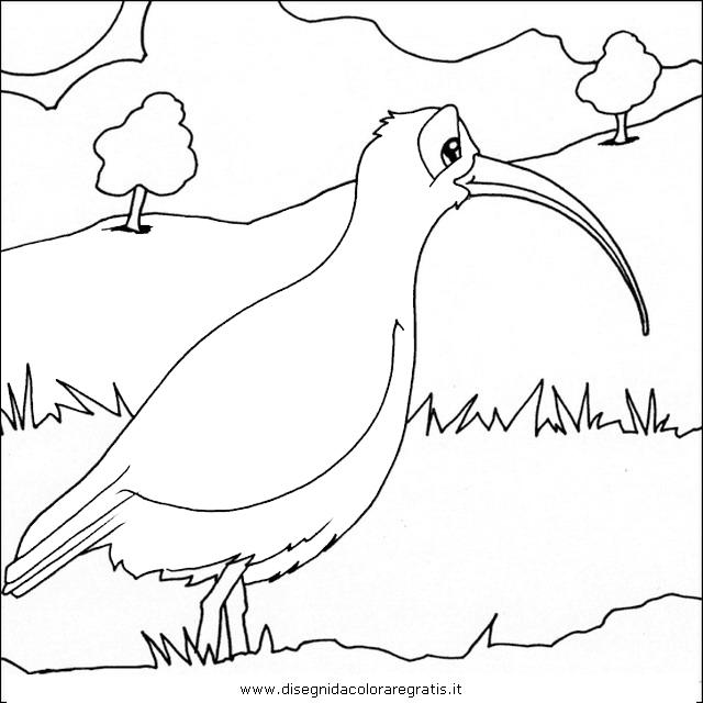 animali/uccelli/chiurlo_02.JPG