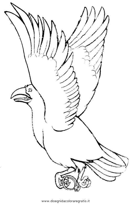 animali/uccelli/cornacchia_corvo_05.JPG