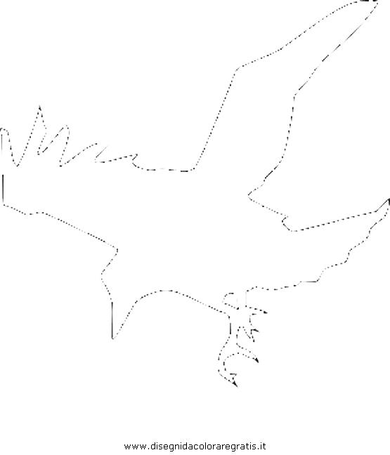 animali/uccelli/cornacchia_corvo_09b.JPG