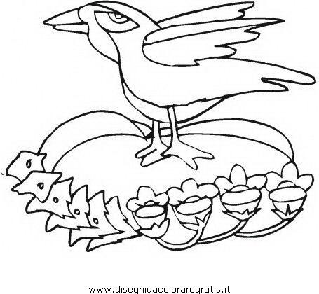 animali/uccelli/corvo_05.JPG