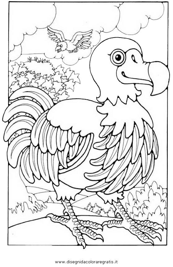 animali/uccelli/dodo_6.JPG