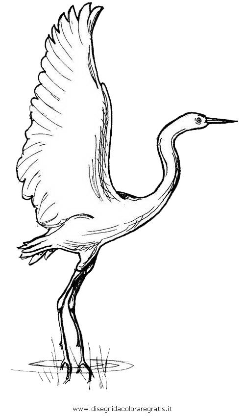 animali/uccelli/garzetta_2.JPG