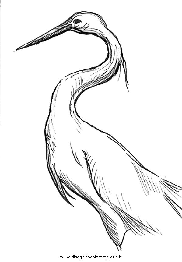 animali/uccelli/garzetta_5.JPG