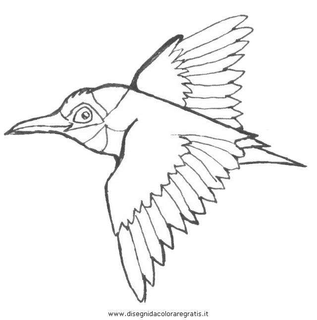 animali/uccelli/gruccione_2.JPG