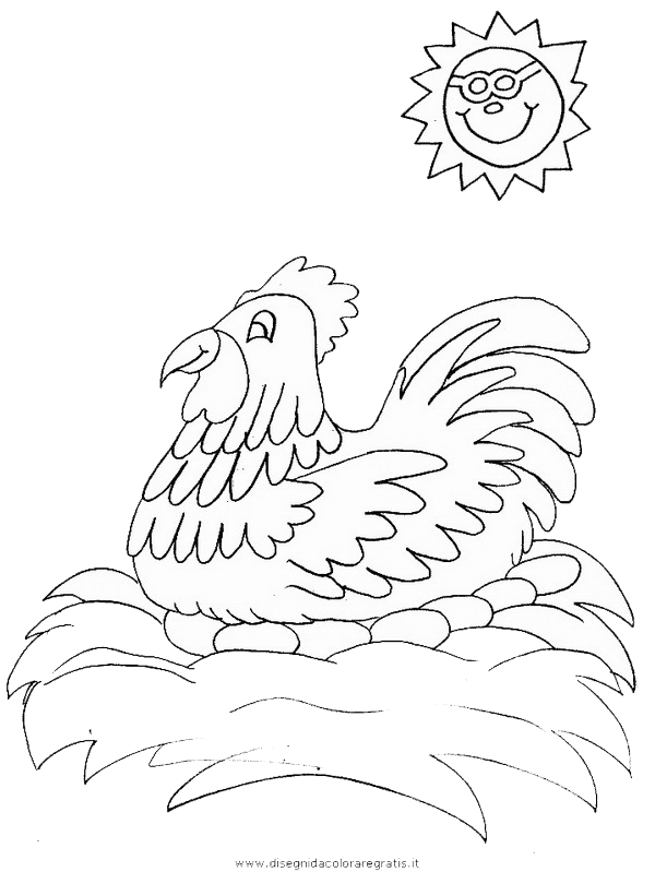 animali/uccelli/hen3.JPG