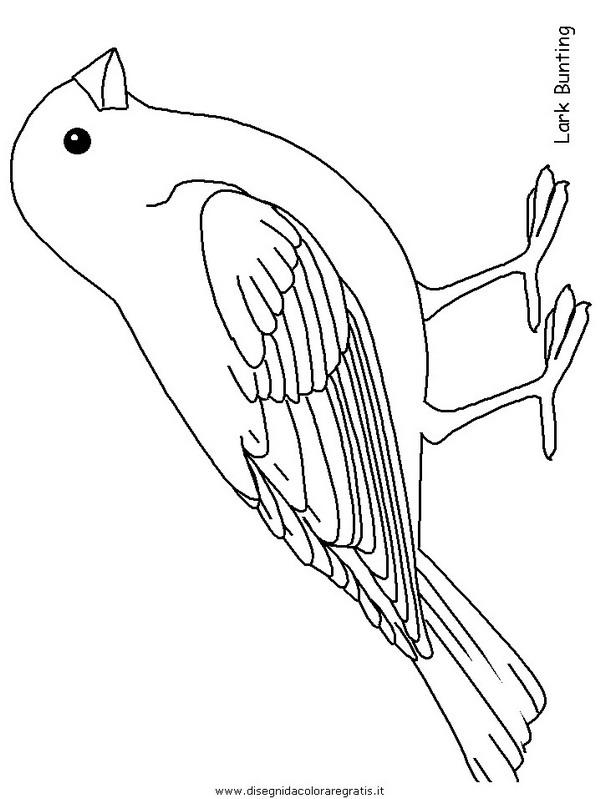 animali/uccelli/larkbunting.JPG