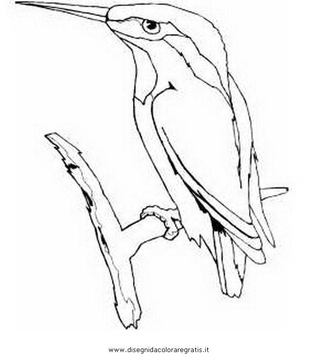 animali/uccelli/martin_pescatore_3.JPG