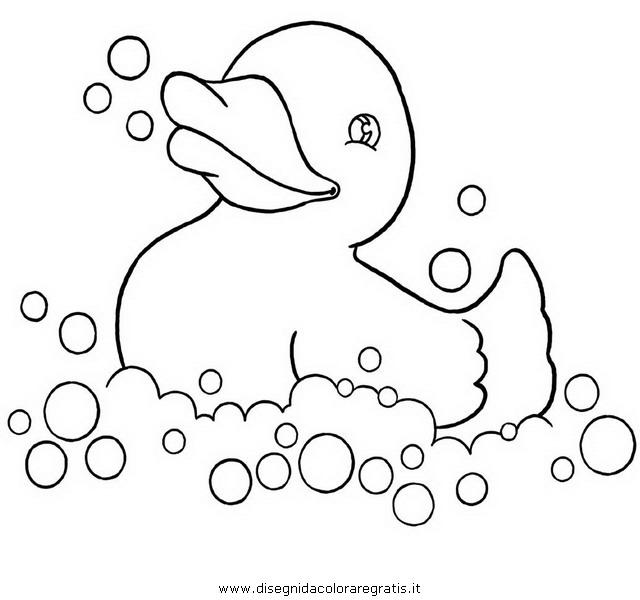 animali/uccelli/papera_papero.JPG