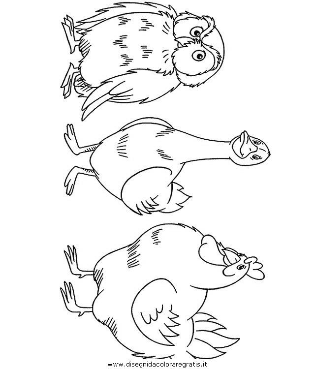 animali/uccelli/uccelli_014.JPG