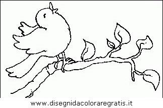 animali/uccelli/uccelli_093.JPG