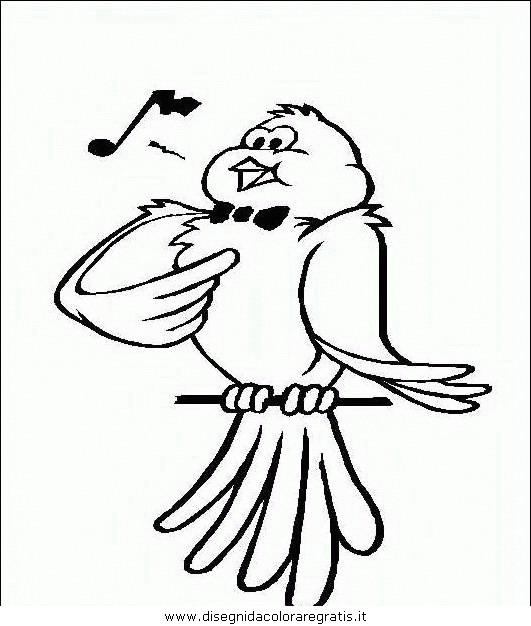 animali/uccelli/uccelli_101.JPG