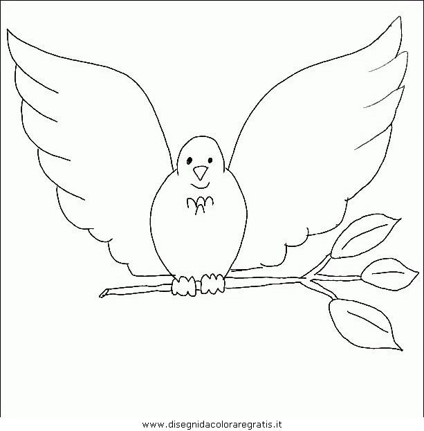 animali/uccelli/uccelli_109.JPG