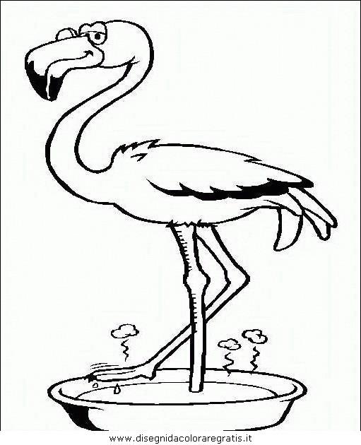 animali/uccelli/uccelli_122.JPG