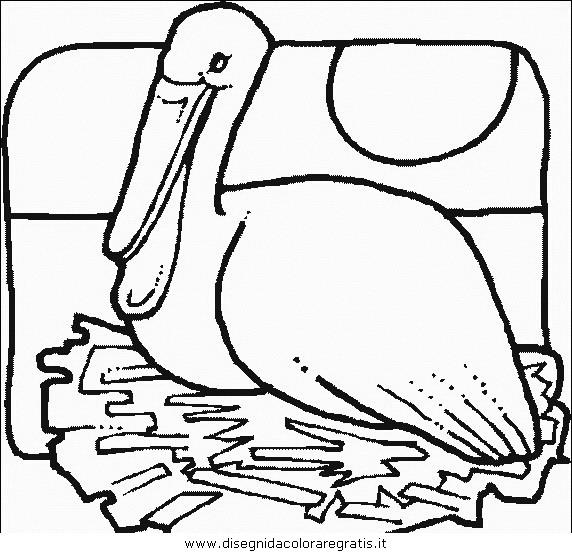 animali/uccelli/uccelli_150.JPG