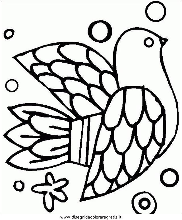 animali/uccelli/uccelli_181.JPG