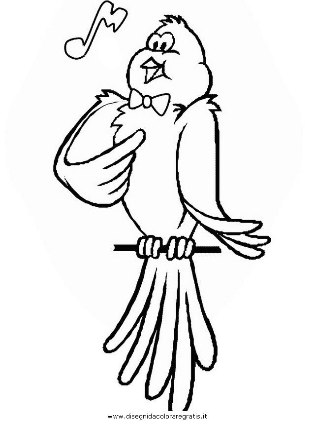 animali/uccelli/uccelli_23.JPG