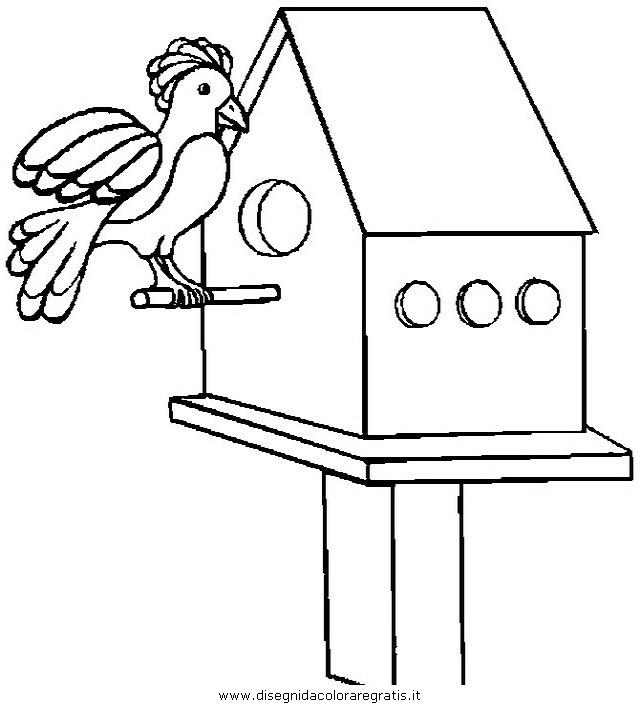 animali/uccelli/uccelli_231.JPG