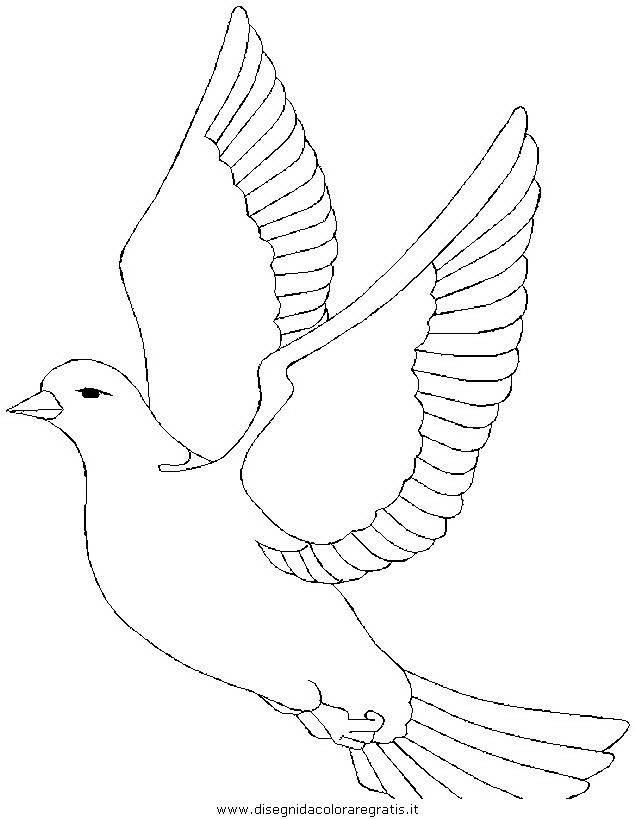 Disegni Da Colorare Uccelli Che Volano Coloradisegni