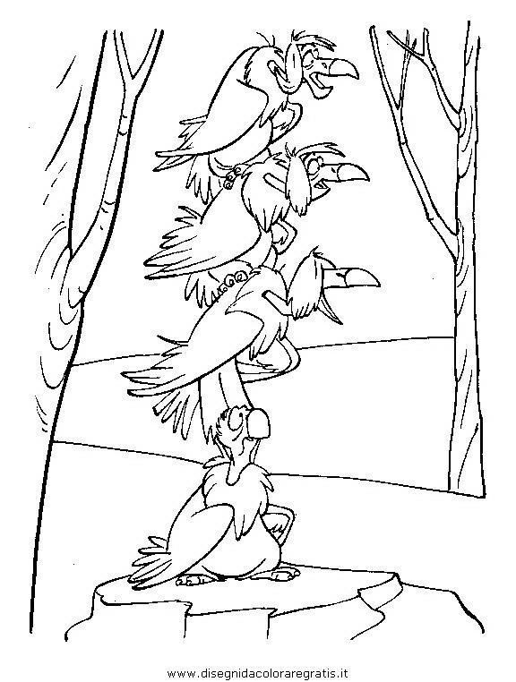 animali/uccelli/uccelli_249.JPG