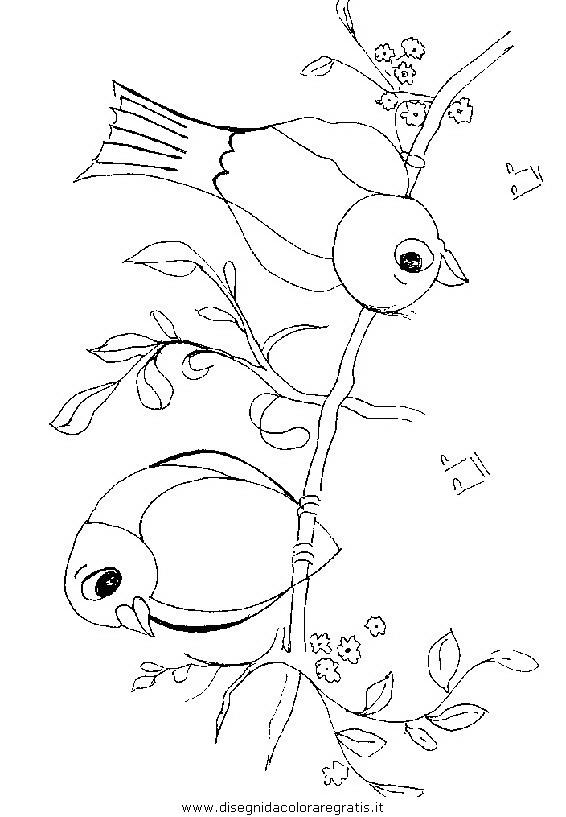 animali/uccelli/uccelli_276.JPG