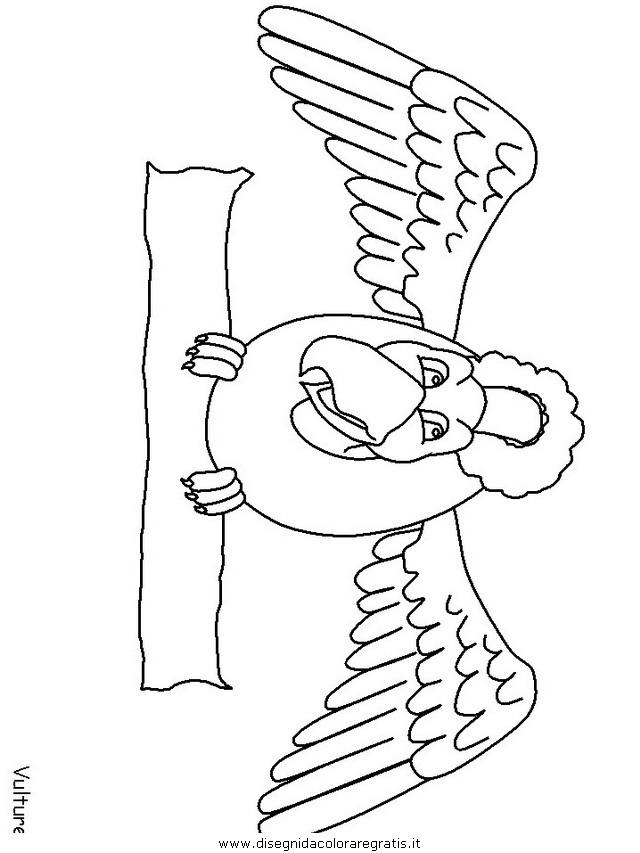 animali/uccelli/vulture.JPG