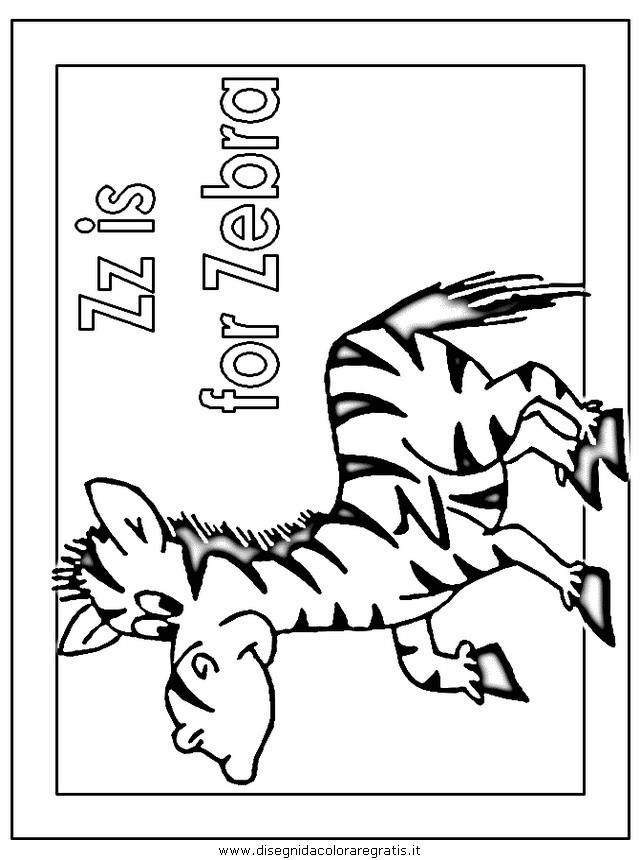 animali/zebre/zebra002.JPG