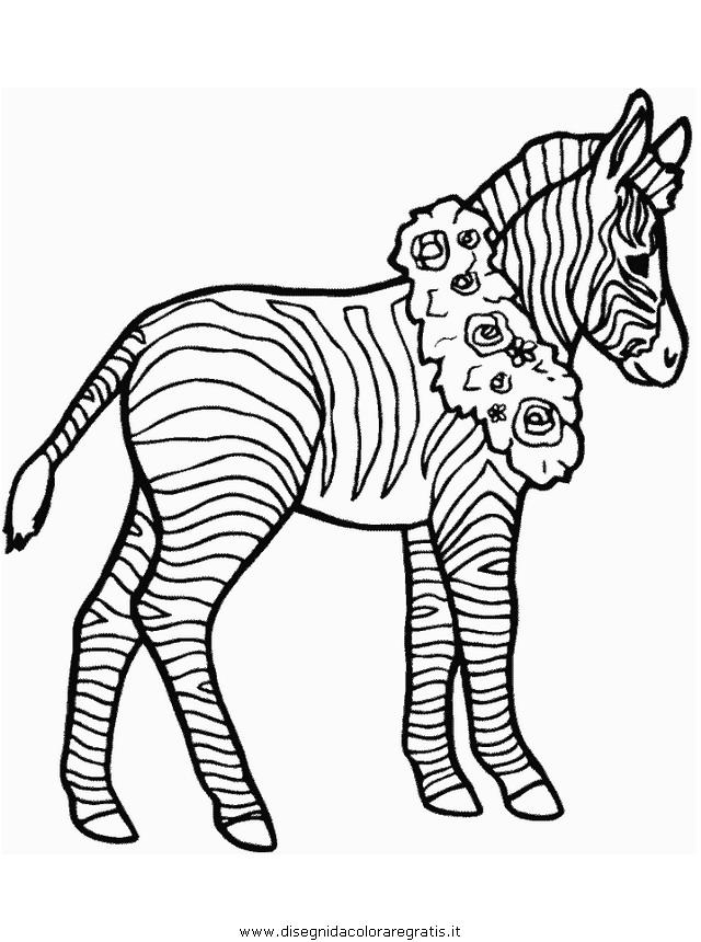 animali/zebre/zebra006.JPG