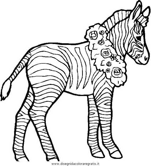 animali/zebre/zebra_30.JPG
