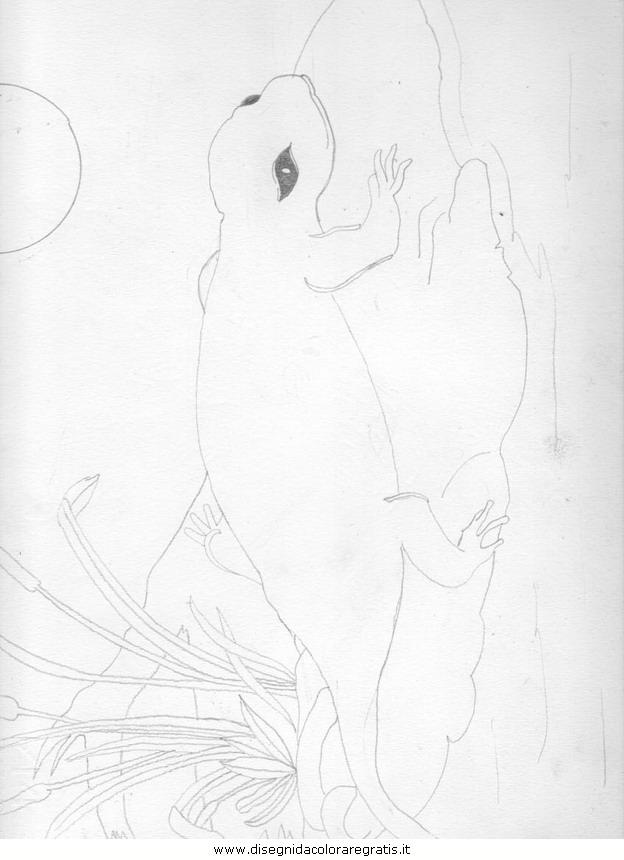 cartoni/mozart/Salamandra.JPG