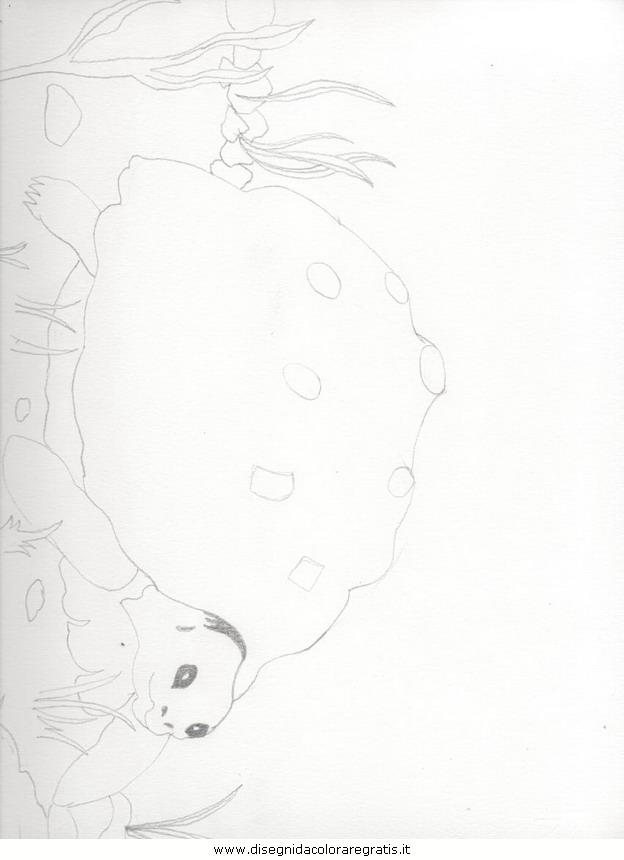 cartoni/mozart/Tartaruga.JPG