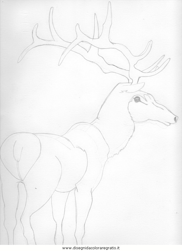 cartoni/mozart/cervo.JPG