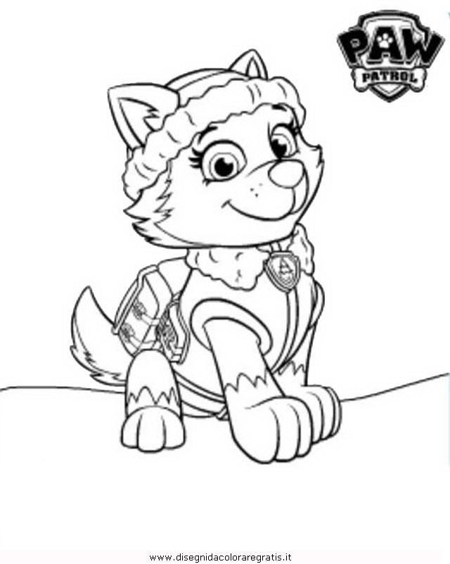 Disegno pawpatrol everest personaggio cartone animato da