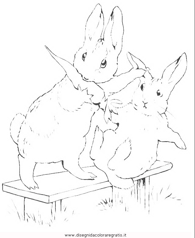 cartoni/peter_rabbit/peter_coniglio_rabbit_16.JPG