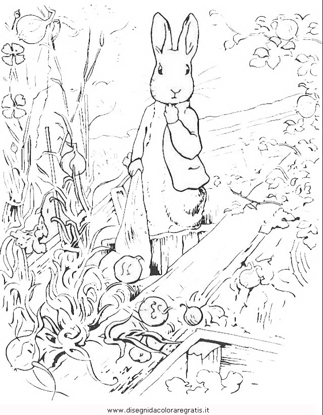 cartoni/peter_rabbit/peter_coniglio_rabbit_18.JPG