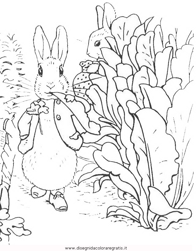 cartoni/peter_rabbit/peter_coniglio_rabbit_19.JPG