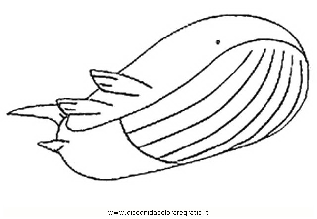 mega wailord coloring pages - photo#19