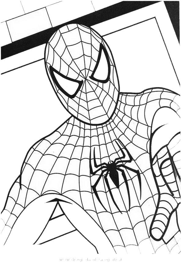 Disegno spiderman 84 personaggio cartone animato da colorare for Uomo ragno immagini da colorare