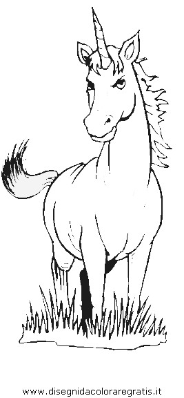 fantasia/unicorni/unicorno_06.JPG
