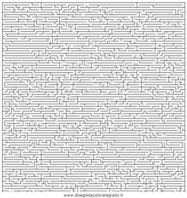 giochi/labirinti/labirinto_professionale_01.JPG