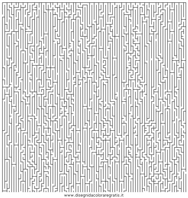 giochi/labirinti/labirinto_professionale_04.JPG