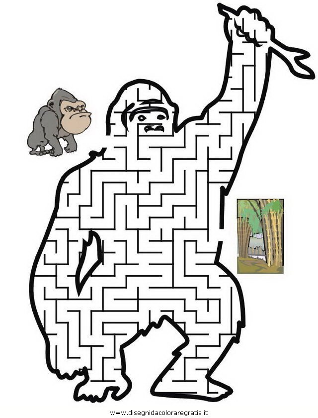 giochi/labirinti_strani/labirinti_strani_32.JPG