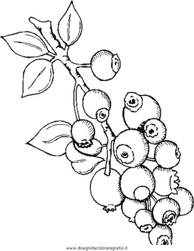 misti/giardino/blueberries.JPG